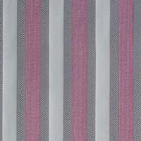 Stripe-rose