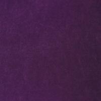 Violet-75