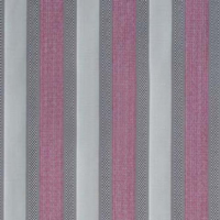 Stripe-rose